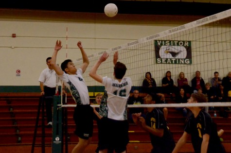Varsity boys' volleyball loses to Mountain View High School at home