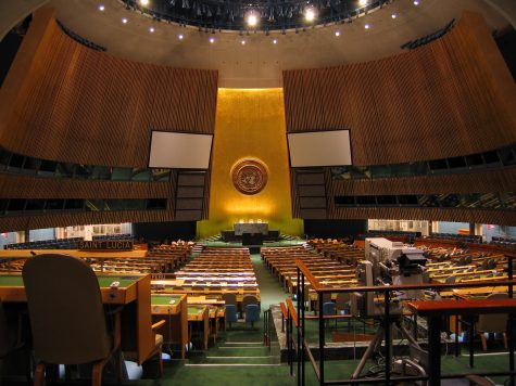Antimicrobial resistance discussed at UN General Assembly