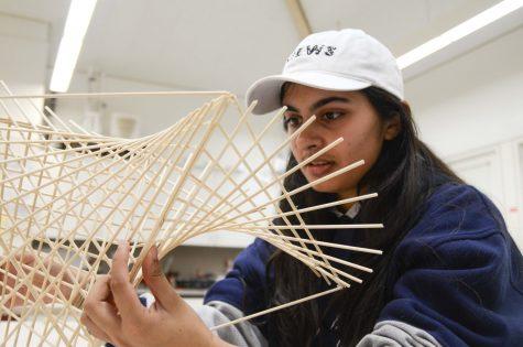 Humans of Harker: Shreya Neogi showcases her individuality through visual art