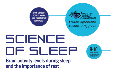 Science of Sleep: Brain activity levels during sleep and the importance of rest