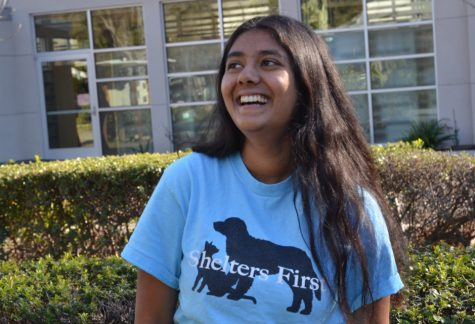 Humans of Harker: Pooja Kini fosters dogs in need of homes