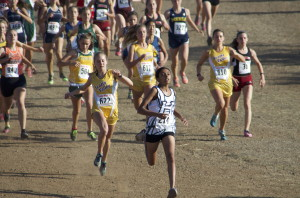 Cross country team attends final meet of the season