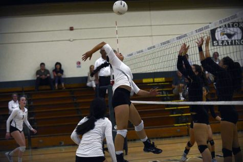 Varsity girls volleyball loses against Homestead High School in season-opener