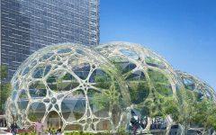 Amazon starts construction on biospheres