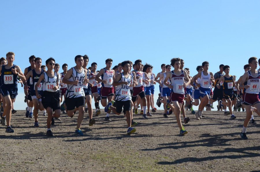 The cross country boys take off along with the rest of the runners from the starting line. The cross country team competed in the WBAL Championships on Nov. 4.