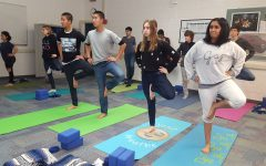 Yoga and capoeira activities offer an alternative to P.E. or team sports