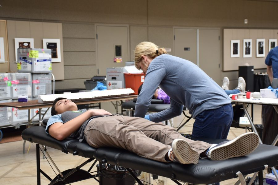 Michael Auld (12) lies down on an examination table as a Red Cross technician prepares him for the donation process. Signups for the 15-minute appointments began last Thursday.