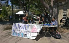 "Members of Interact sold Pinkberry frozen yogurt and pizookies this week for their club week. ""It's Interact's club week, and we're supporting our international cause, which is protecting Syrian refugees. This was a communal project that we all decided upon in our districts in all of Interact,"" Sarah Tien (12), one of Interact Club's presidents, said."