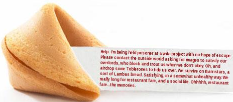 Good Fortune Friday: Our interpretations of what sits inside a fortune cookie