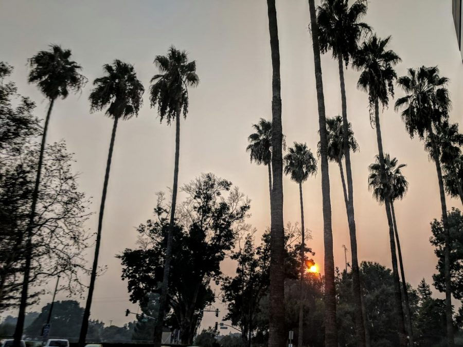 """The setting sun shines dimly over a haze of smoke brought about by the winds blowing from the fires in Northern California. As reported by the Environmental Protection Agency, the air quality index (AQI) in San Jose was at a level designated as """"unhealthy for sensitive individuals"""", a category that includes all children and those with heart or lung disease, based on the particulate matter in the air from Wednesday to Saturday."""