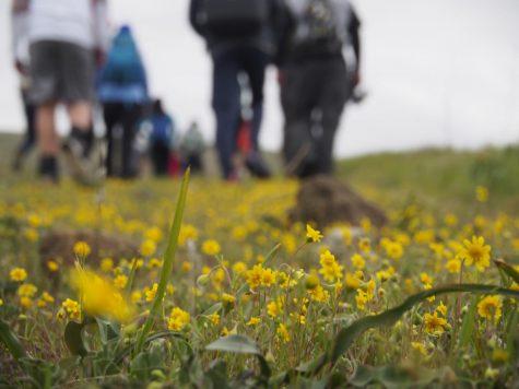 Harker community returns to Coyote Valley Open Space Preserve