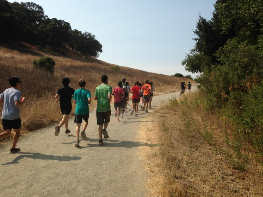 Members of the Cross Country team run a warm up lap during practice at Rancho San Antonio Open Space Preserve. The Cross Country team started preseason practices on July 9.