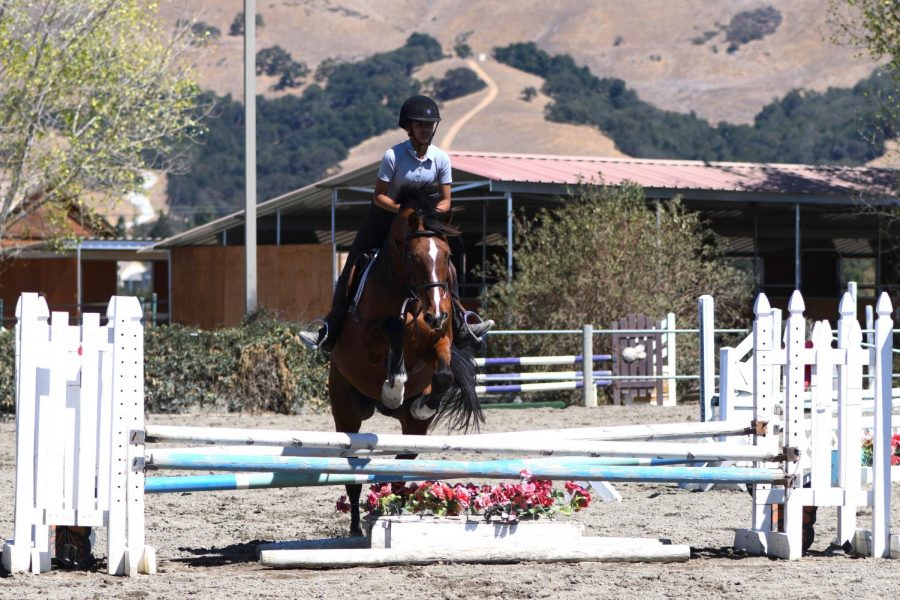 Nilisha+Baid+%2810%29+and+her+horse+Manny+jump+over+a+hurdle.+After+years+of+developing+skills+and+enjoying+horses%2C+Nilisha+joined+the+competitive+program+for+horseback+riding+last+year.