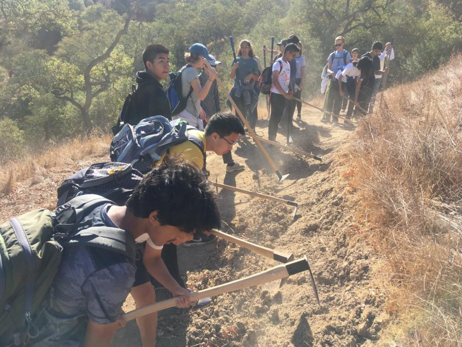 Members of the class of 2022 clear invasive plant species from the side of a trail at the Coyote Valley Open Space Preserve. The freshmen received five hours of service for their work on the annual community service trip.