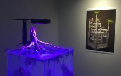 Aquascape exhibit inaugurates Shah showcase gallery