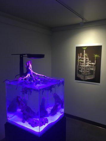 Raymond Banke's exhibition
