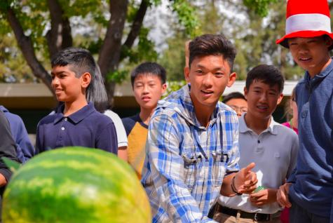 "Freshmen win ""Fruit Ninja"" spirit activity"