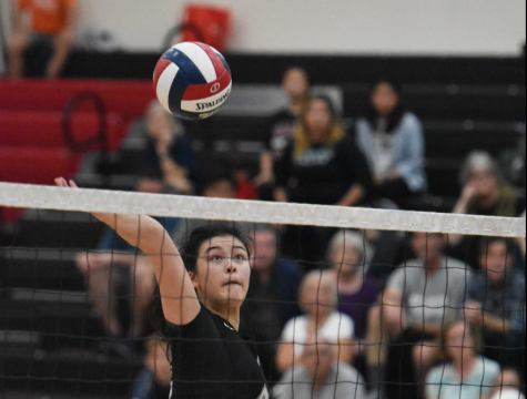 Allison Cartee (12) spikes the ball in today's CCS finals match against Notre Dame High School, held at Gunn High School this evening. The Eagles lost 14-16 in the fifth set.