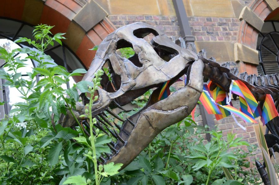 The metal fossil of a dinosaur lined in rainbow flags stands outside a biology complex at Cambridge University. The university, the second oldest in England, is composed of 31 colleges, each containing 100 departments.