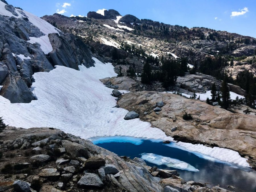 Pink-colored snow melts on a mountain at Yosemite National Park. Pink color is formed by a snow algae called chlamydomonas nivalis, which uses a pigment to protect itself from harsh UV rays found at high altitudes.