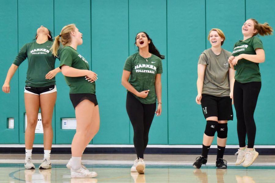 """The juniors cheer after winning a point against the seniors in the final round of the """"Hustle for Muscle"""" volleyball tournament hosted by Harker DECA and spirit on Nov. 21. The tournament and proceeds from food sales were part of a fundraiser for the Muscular Dystrophy Association (MDA)."""