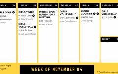 Sports preview: Week of Nov. 4