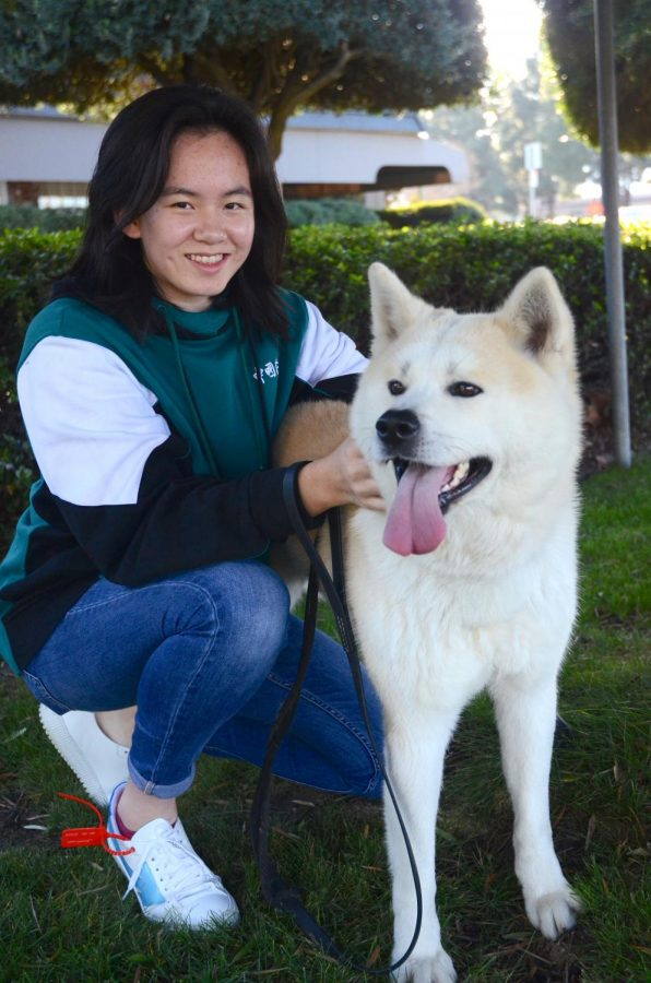 """""""Especially at Harker, where the academic pressure is very high, I think humor is a very good way to help both my friends and me destress ourselves. In fact, making others laugh gives me a sense of satisfaction, that I've done something good in the lives of others,"""" Emma Li (12) said."""