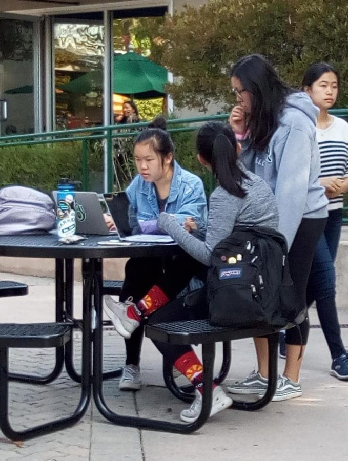 Aimee Wang (10), Gloria Zhu (10) and Alina Yuan (10) work on their Synopsys research projects last year.