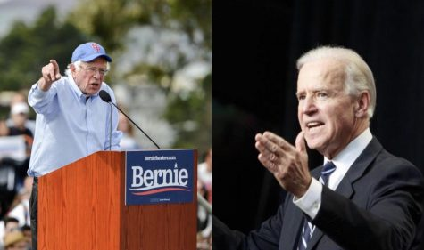 From left to right: Democratic candidates Bernie Sanders (I.-V.T.) and former Vice President Joe Biden.