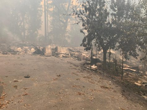 Upper school English teacher Beverley Manning's house was burned to the ground by the CZU Lightning Complex Fire, which has now burned over 86,000 acres. Manning evacuated from the wildfire with her rescued animals.