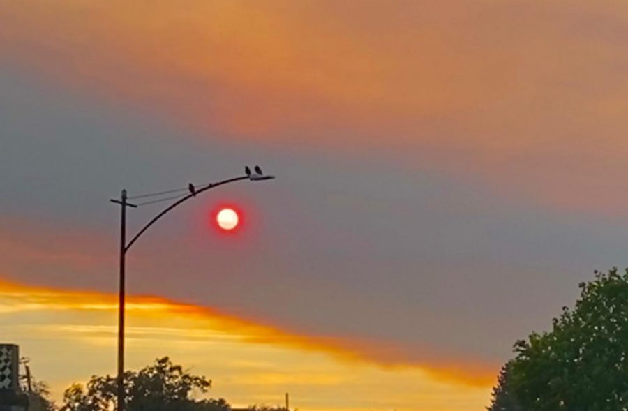 The sun appears red on Aug. 18 in Mountain View due to a thick layer of smoke.