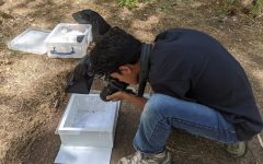 Prakrit Jain (11) photographs a sample for his project that built an automatic software to create ranged maps for wildlife.