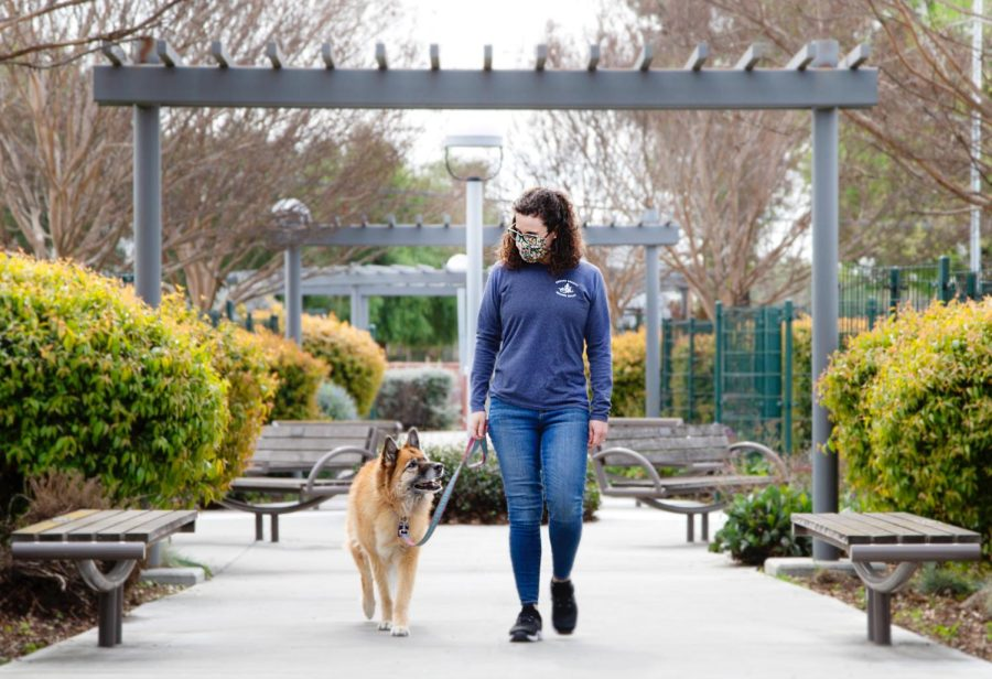Dr. Sue McNeill-Bindon takes a walk with her rescue dog Honey. McNeill-Bindon found the dog 12 years ago at the dump and nursed her back to health.