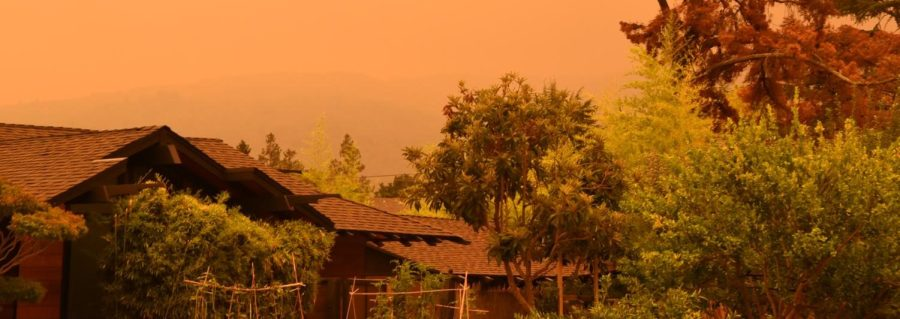 The Bay Area Sky turned shades of orange and yellow due to the fires ravaging the state in 2020. At the time the photo was taken, over 3.1 million acres of land had burned since the start of the year.