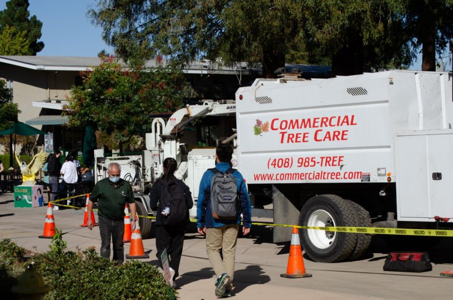 A Commercial Tree Care truck is stands in front of the tree outside Dobbins as students and maintenance faculty walk around yellow caution tape around the truck. Yellow caution tape was placed around the tree in Dobbins to ensure the safety of faculty and students during the branch removal.